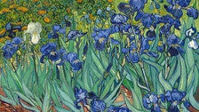 """""""Irises"""" by Van Gogh at the Getty Center"""